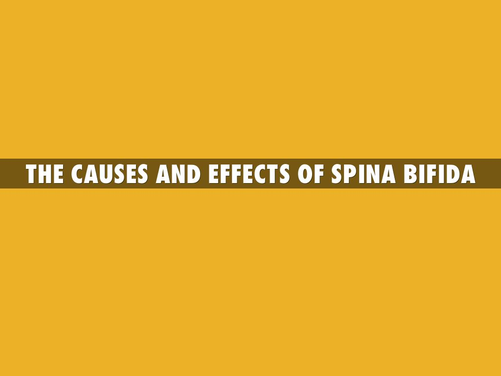 The Causes and Effects Of Spina Bifida by kroug1222