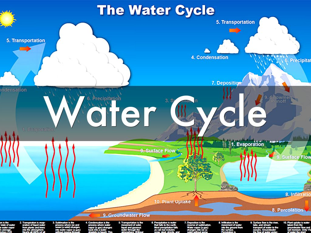 Water Cycle: Water Cycle By Frank Garcia