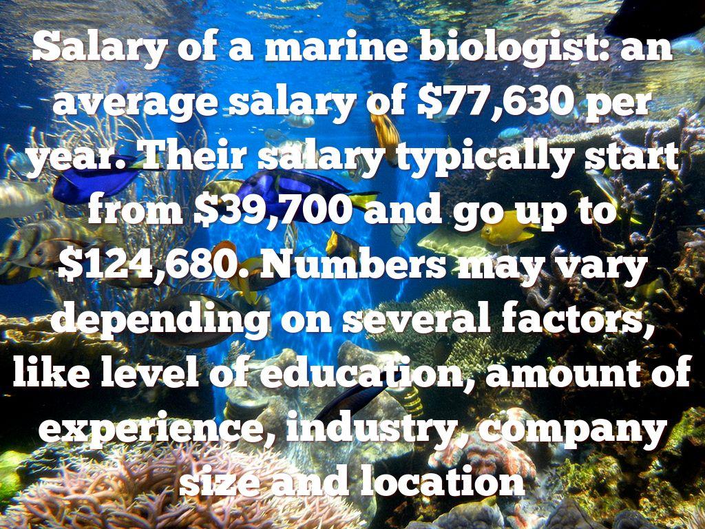 job duties of a marine biologist estimate plant and wildlife population analyze characteristics of animals to - Wildlife Biologist Job Description