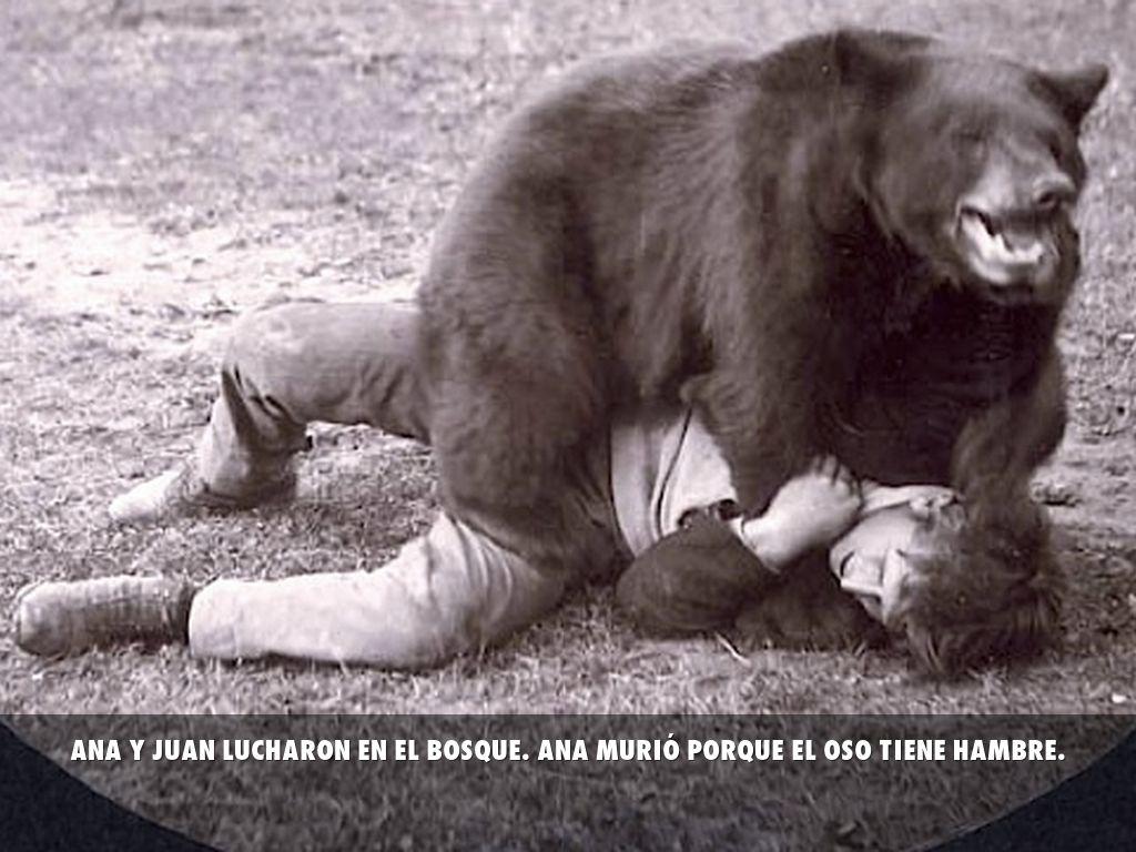 do black bears attack humans - 636×358