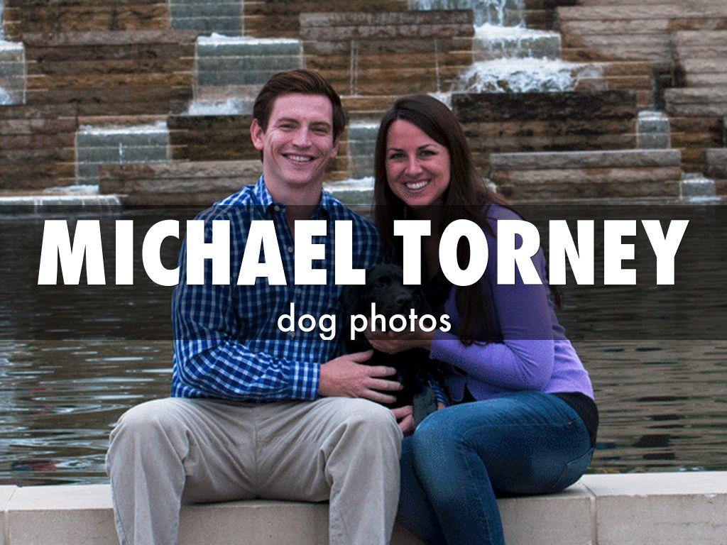 Michael Torney - dog photos
