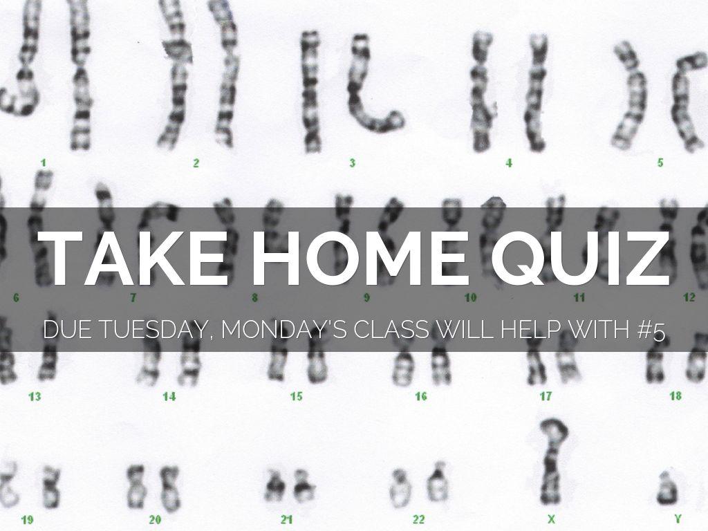 take home quiz