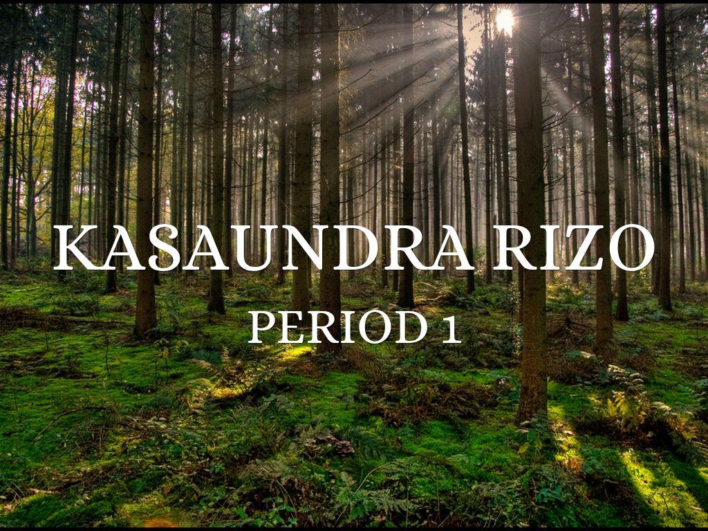KaSaundra Rizo
