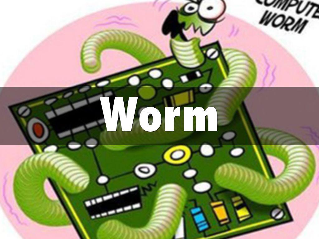 Worm virus