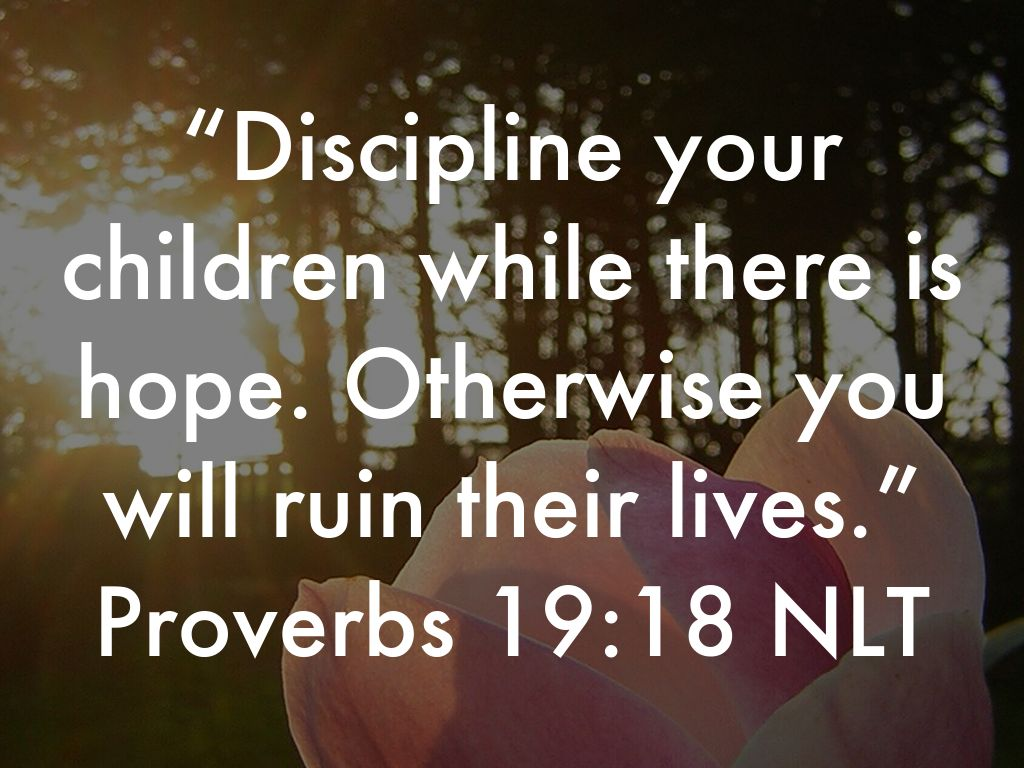 Discipline by Lisa Bell