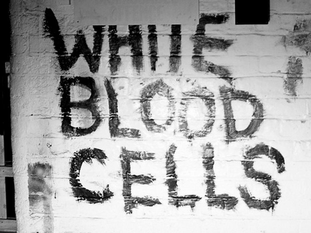 Differential White Blood Cell Count