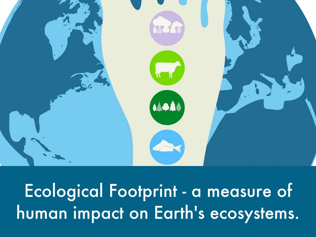 ecological footprinting in an ib school Ib geography ecological footprint a case study of the ecological footprints of 4 of 5 of the nordic countries their low ecological footprint is due to their small population and heavily forested land while their sources of power have been expanded dramatically in.