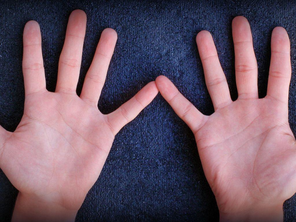 dve-ruki-levaya-i-pravaya