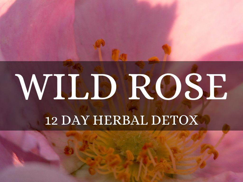 wild rose detox