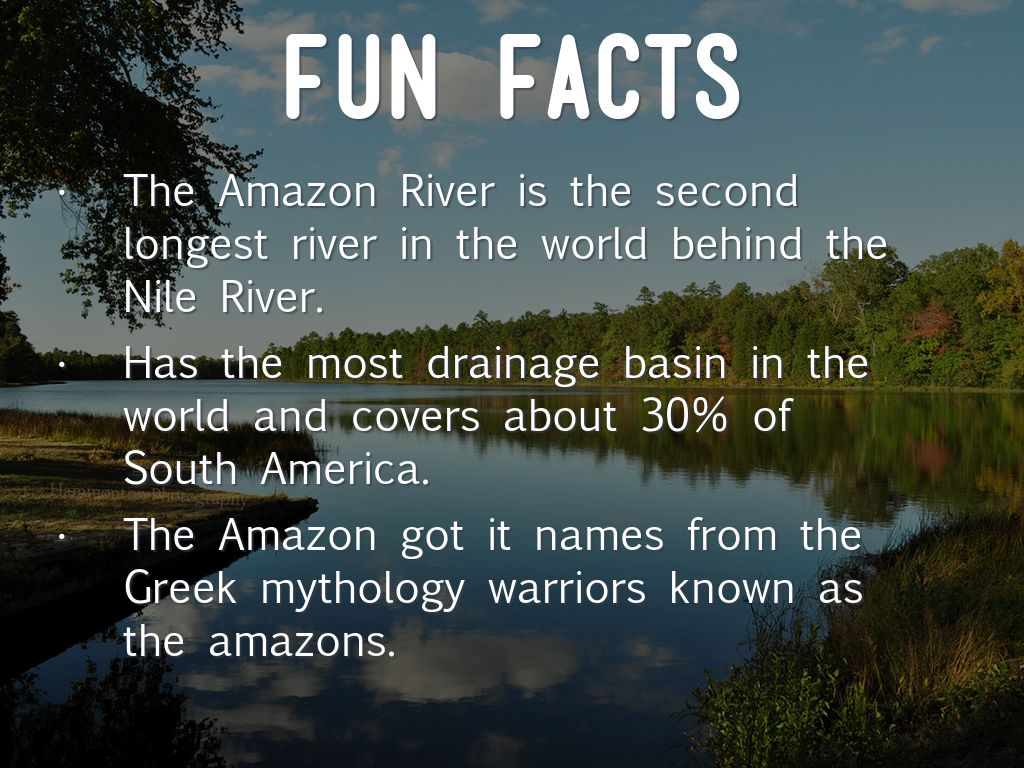 South america amazon river by kyndal lewis for Fun facts about america