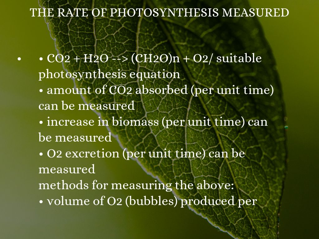 how can the rate of photosynthesis be measured