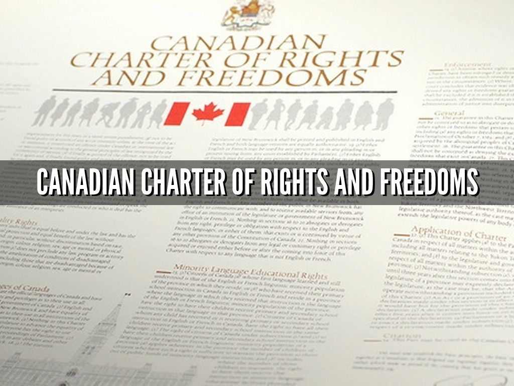 The Charter of Rights and Freedoms : 30+ Years of Decisions That Shape Canadian Life