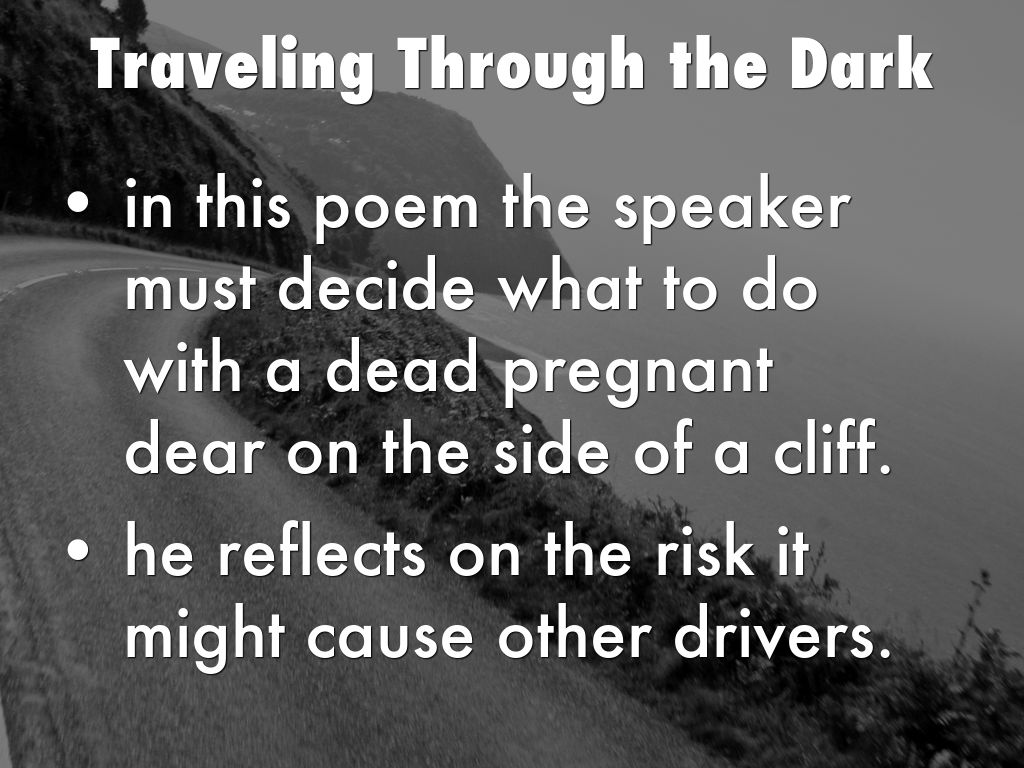 traveling through the dark poem