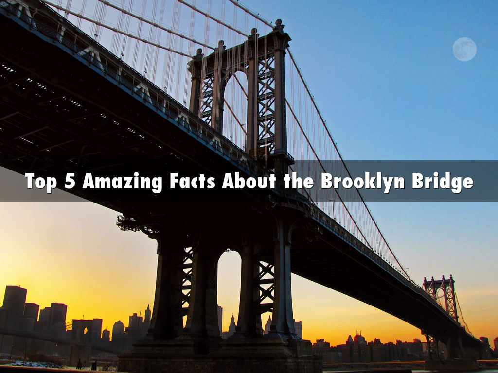 Pedro Torres Ciliberto - Top 5 Amazing Facts About the Brooklyn Bridge