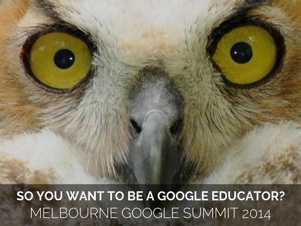 SO YOU WANT TO BE A GOOGLE EDUCATOR?