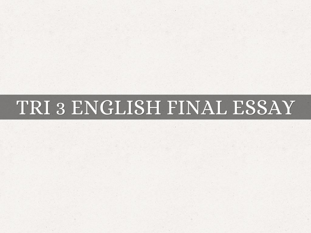 sherlyne brutus by sherlyne brutus tri 3 english final essay