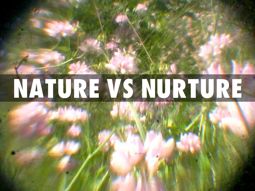 Who Started Nature Vs Nurture