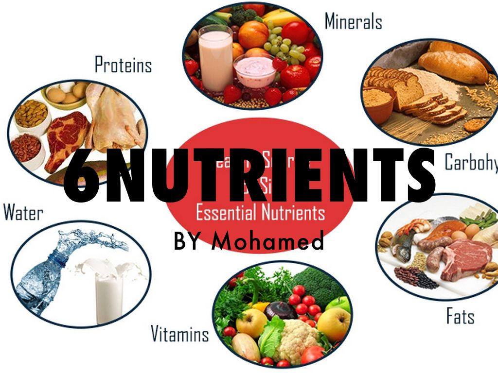 The 6 Different Nutrition
