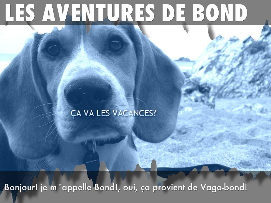Les aventures de bond by sarah givi for Aventures de maison