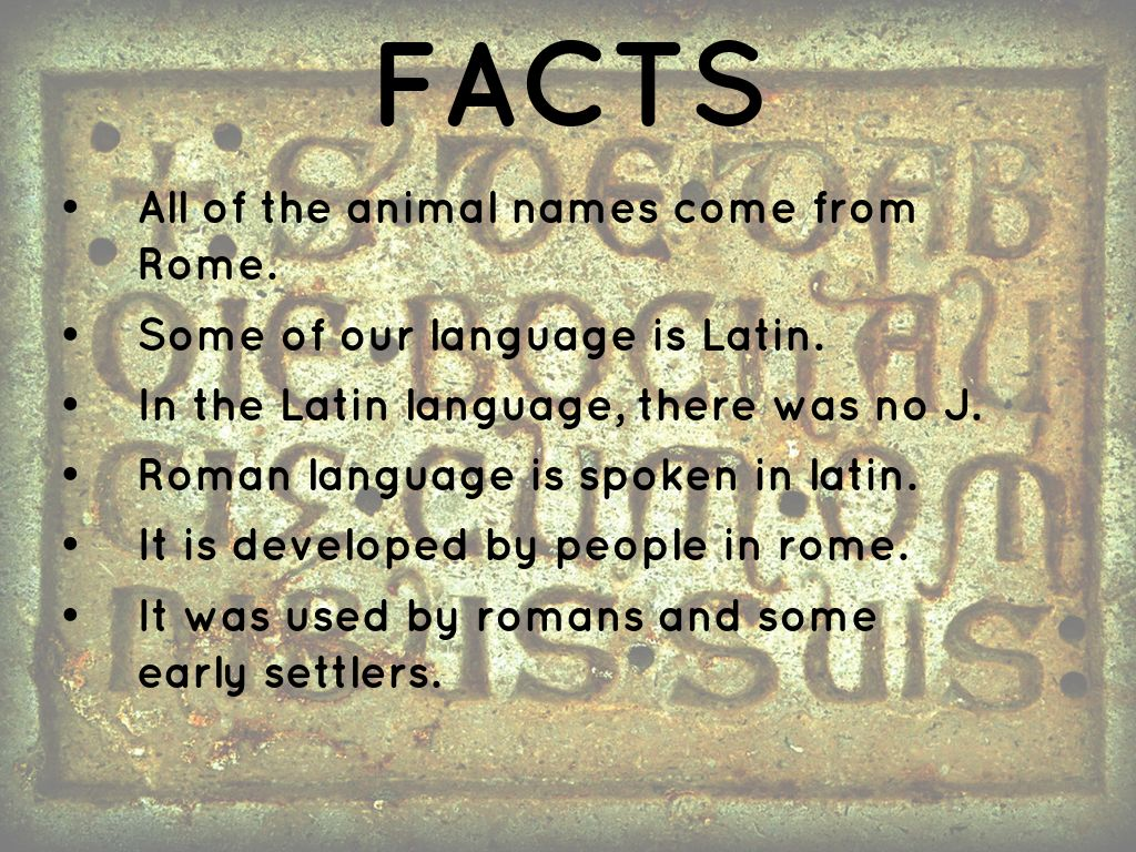Roman Language 90444 | VIZUALIZE