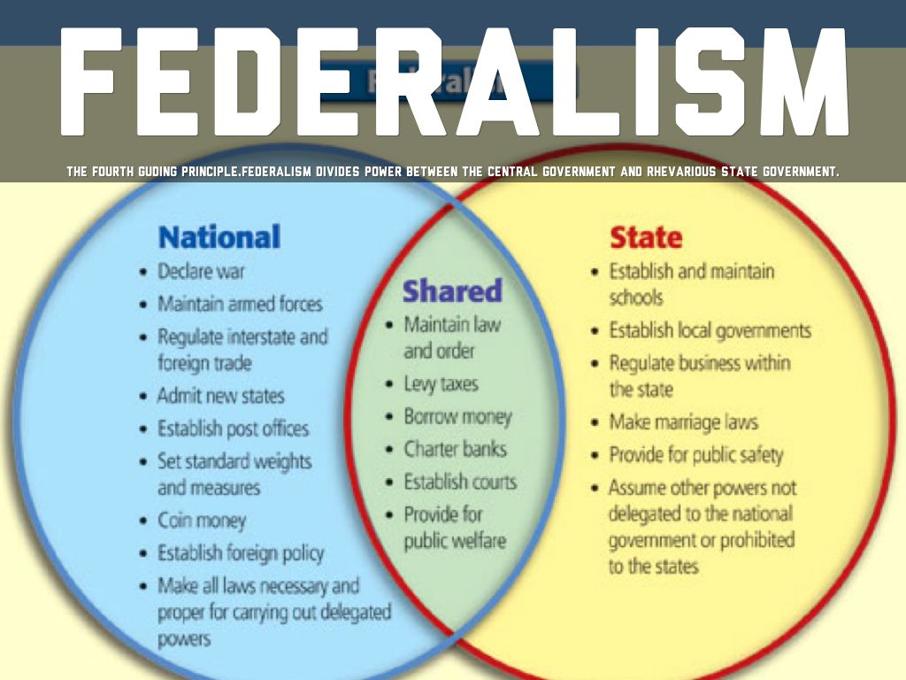 understanding federalism the division of power between the national and state governments A federal system of government, such as in the united states, divides power and responsibilities between the national government and state governments at first glance, the us constitution appears to make this division clear.