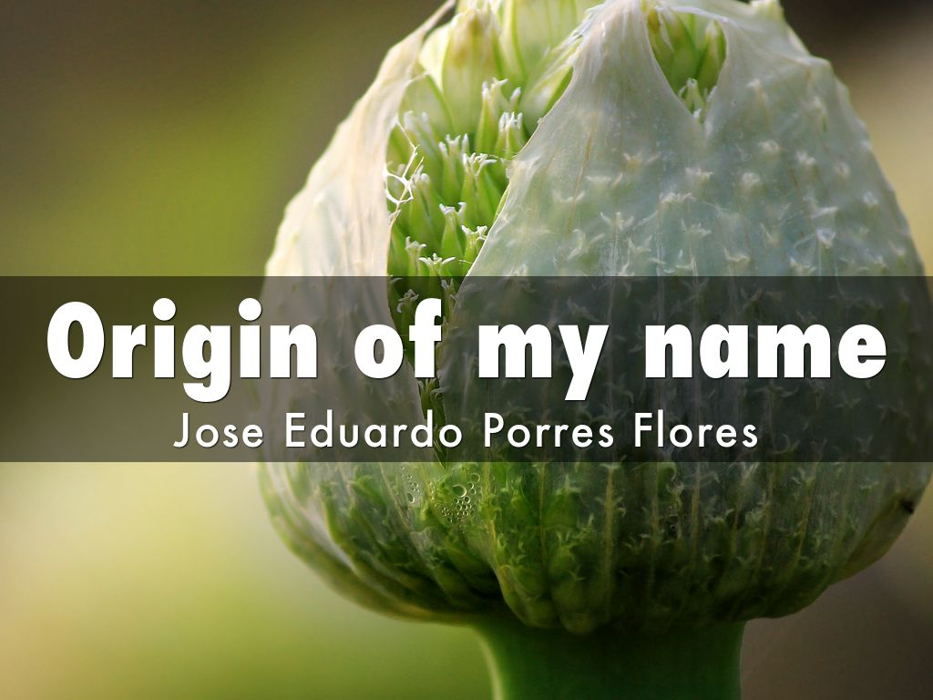 Origin of my name by joseporres100