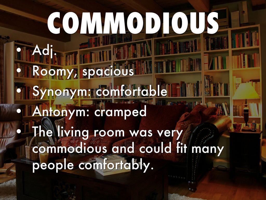 Spacious Living Room Synonym