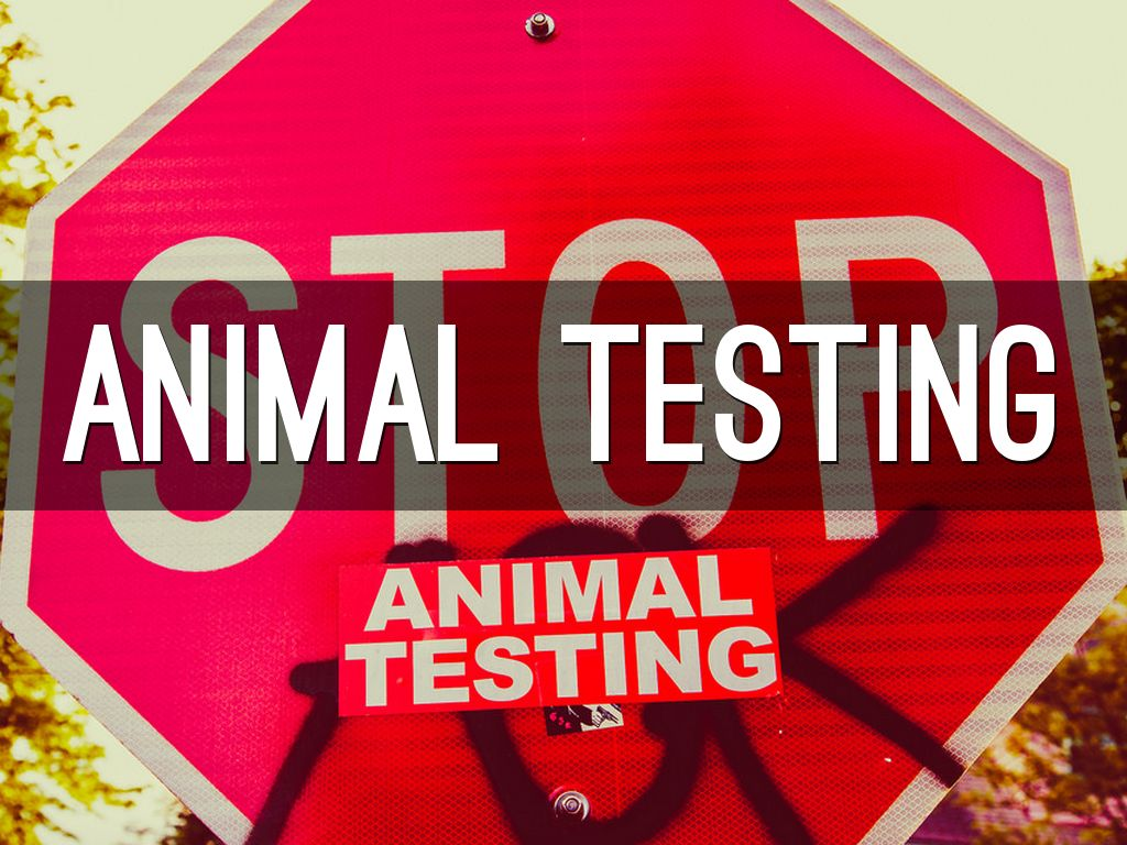 how to write a persuasive speech on animal testing