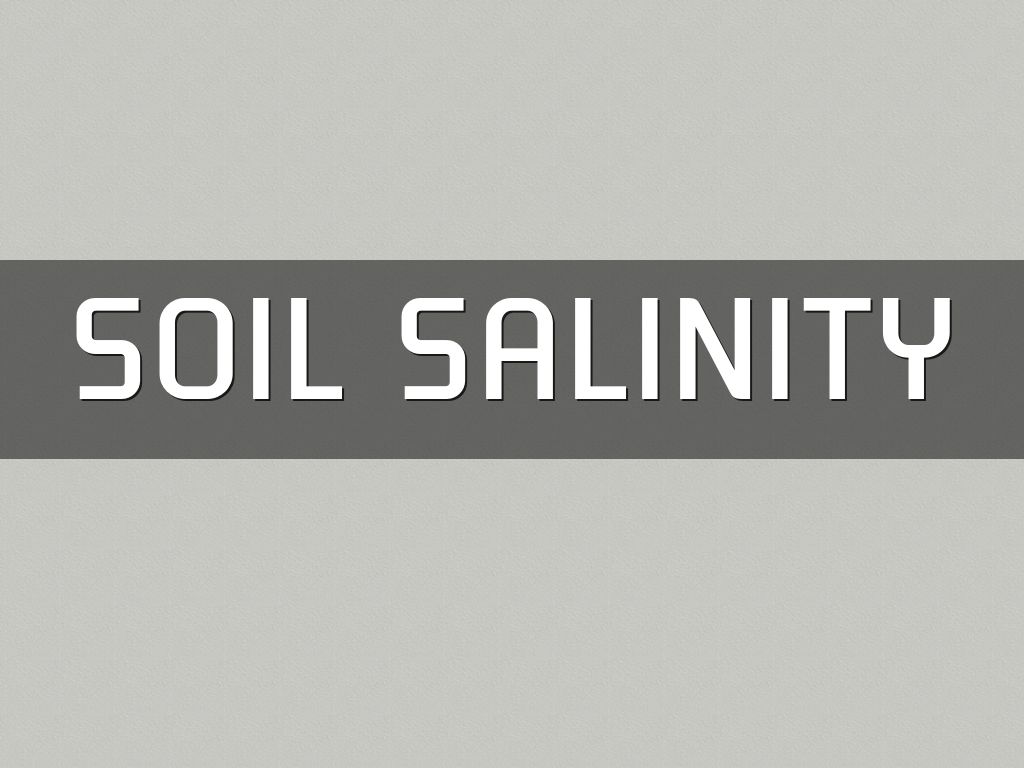 Haiku deck gallery education presentations and templates for Soil salinization