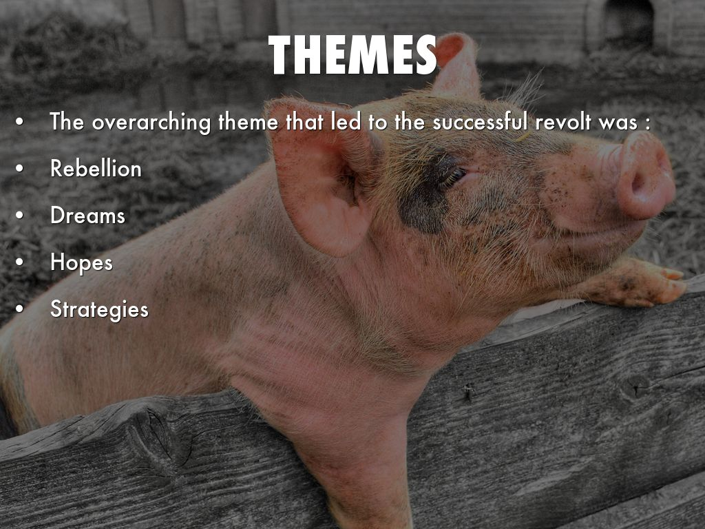 animal farm themes Animal farm runs on pig fat and lies by the end, truth has become so malleable that the animals can't even remember what actually happened a lie is something that contradicts the pigs.