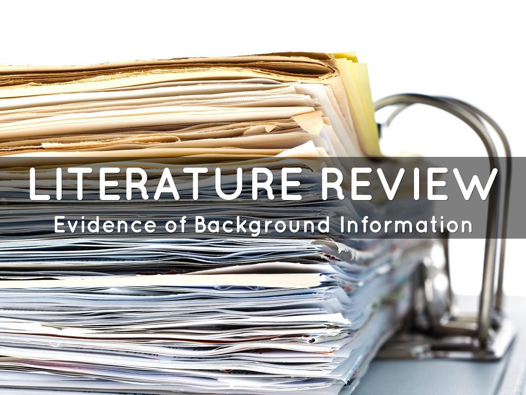 literature review on bloggers