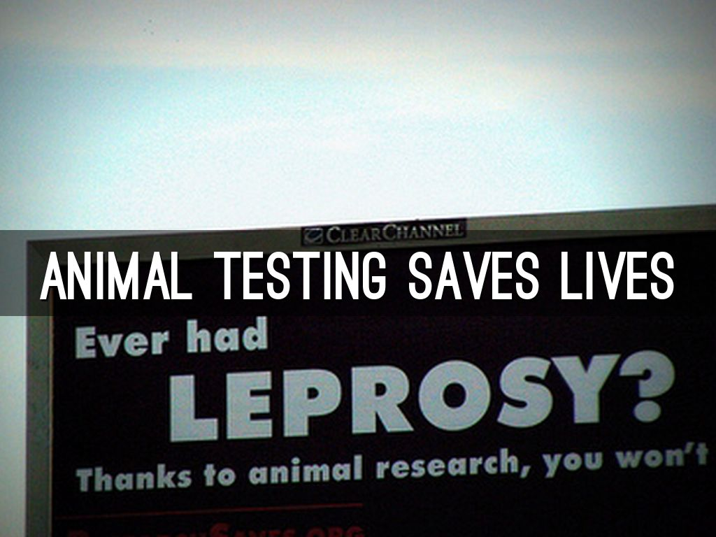 animal testing saves lives Does animal experimentation save human lives  environment than by all the animal tests in  that can probably only be cured by testing on unwilling.