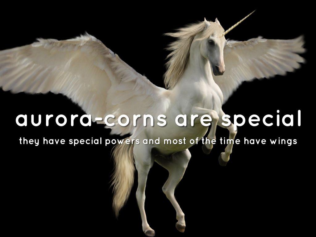 unicorns by hy188471