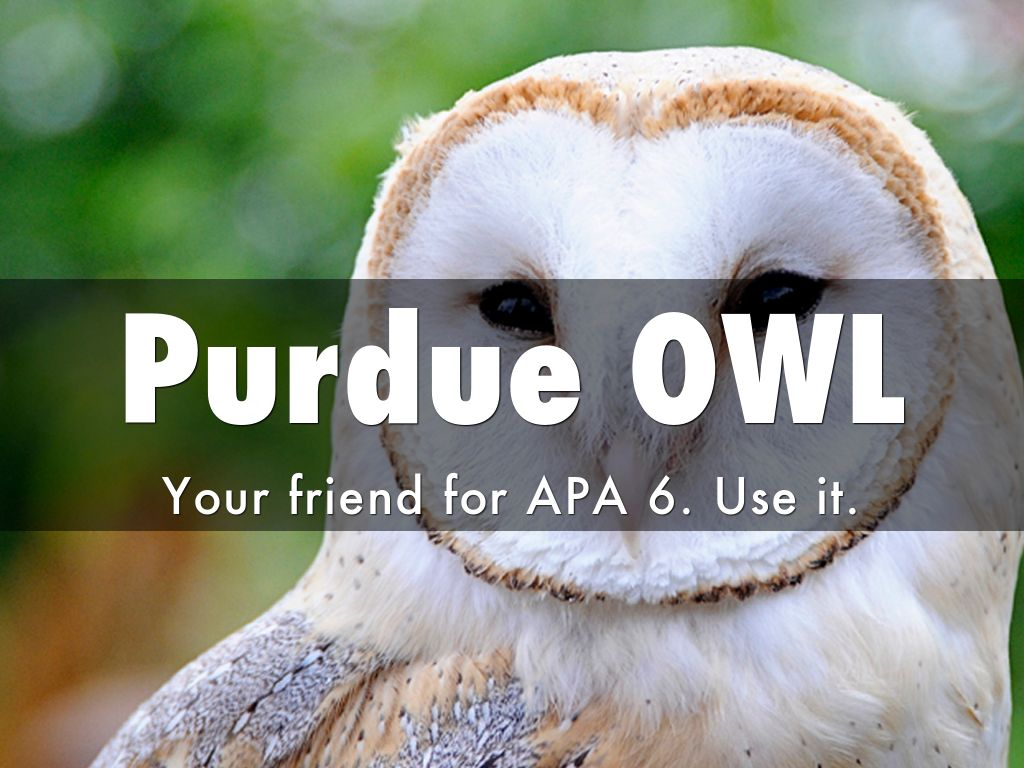 owl research papers