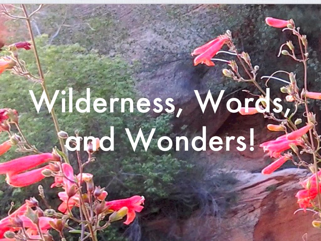 Copy of Copy of Wilderness, Words, And Wonders