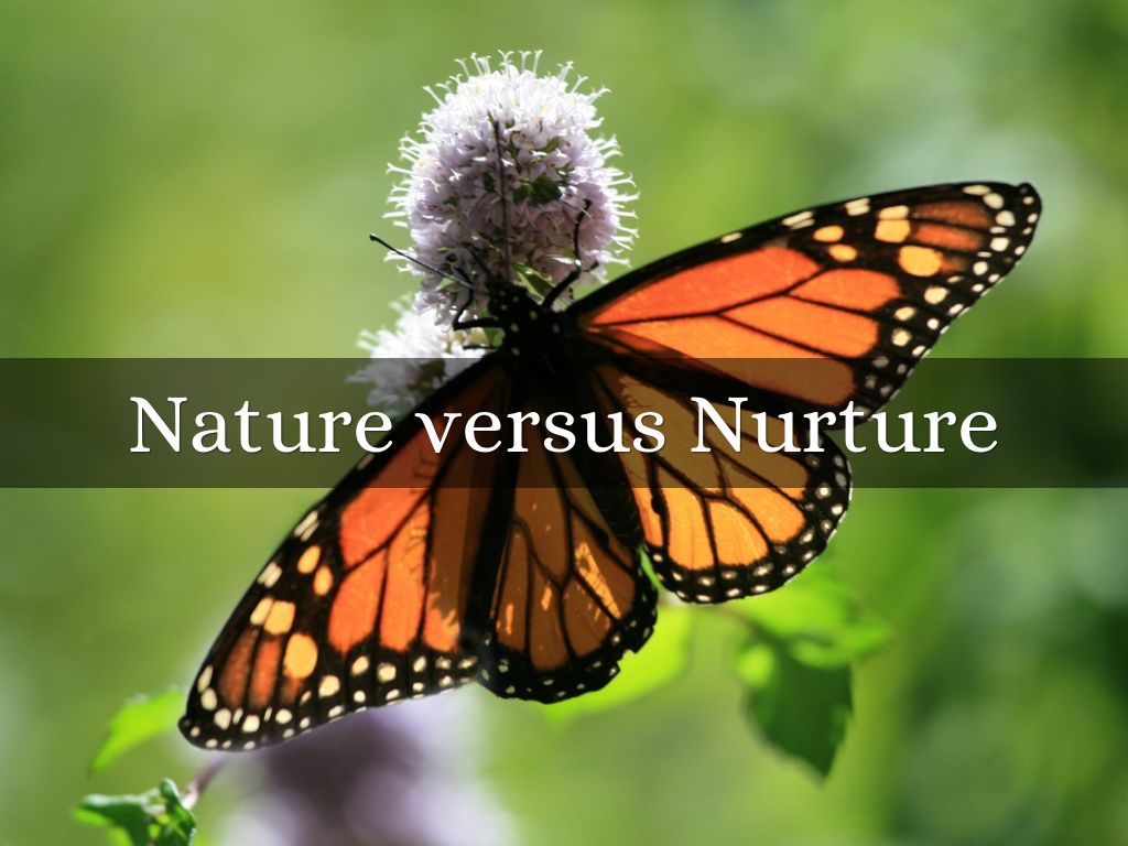 nature vs nurture anthropology Nature nurture - free download as powerpoint presentation (ppt), pdf file (pdf), text file (txt) or view presentation slides online.