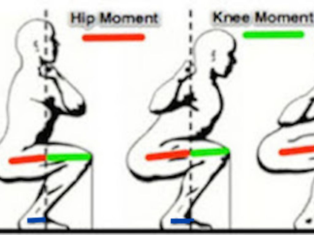 Biomechanical Analysis Of Squat And Deadlift By
