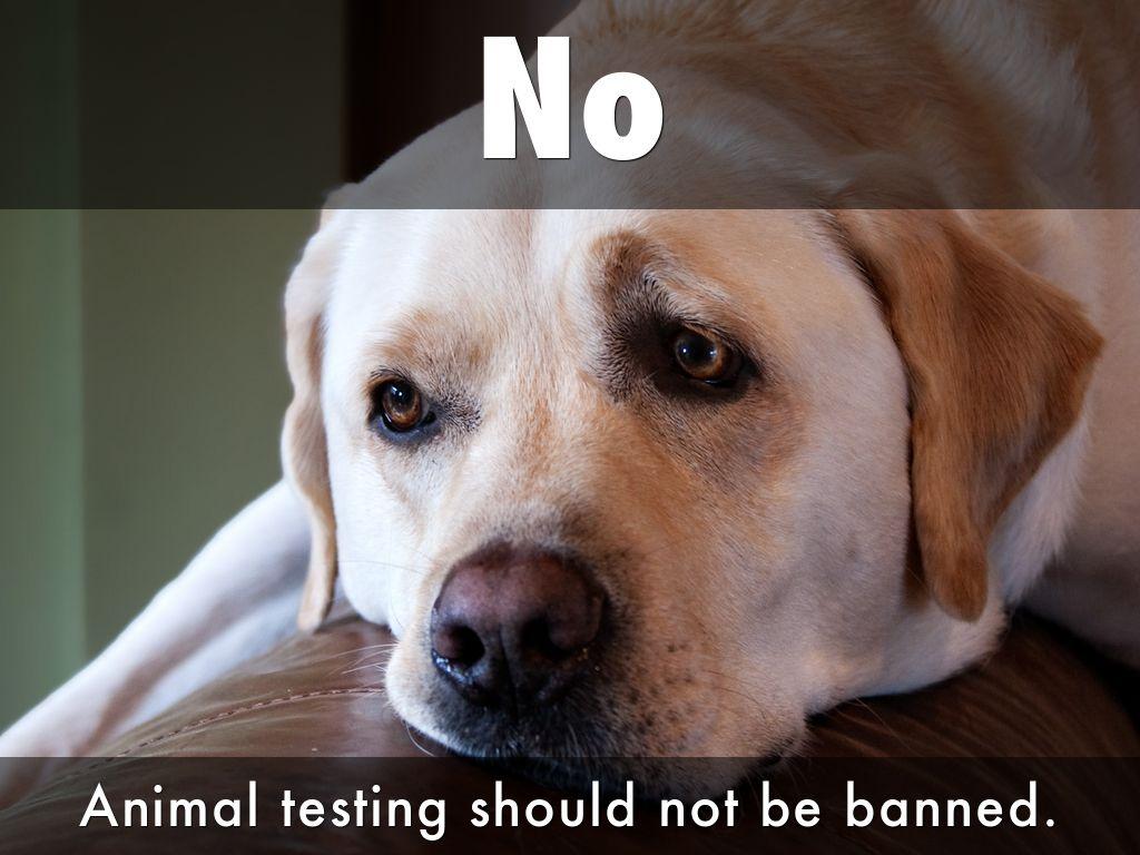 SECURITY TEST EQUIPMENT: