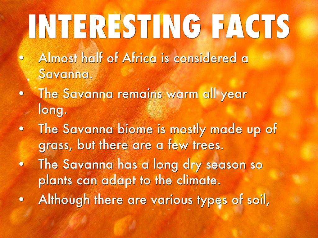 Savanna by savannah by matt danahy for 5 facts about soil