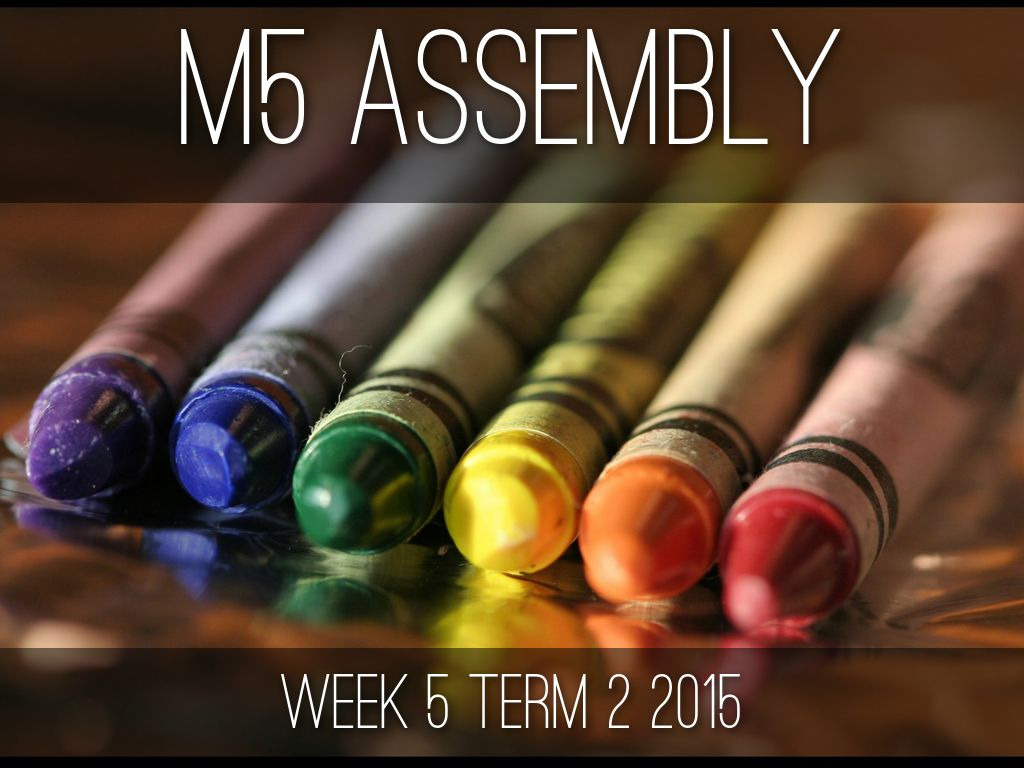 M5 ASSEMBLY