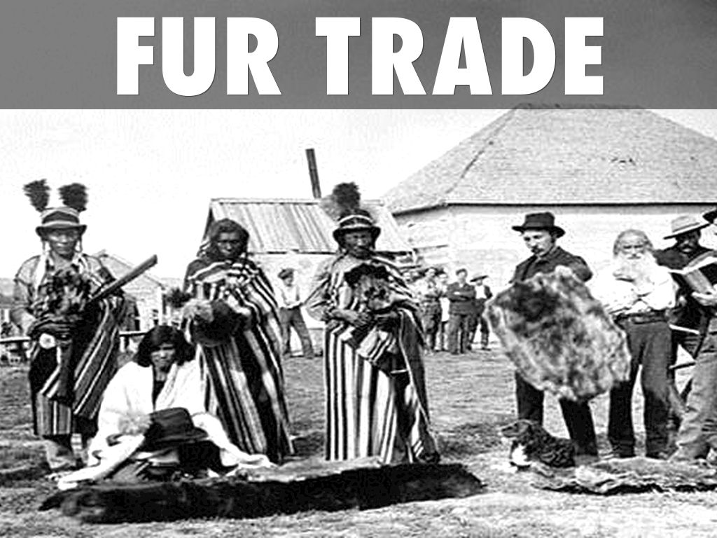 the history and growth of the canadian fur trade Innis's magnificent works on the cod fishery and the fur trade stand  growth, or, even worse, a canadian  wheat boom in canadian economic history.