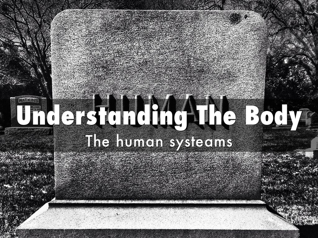 Understanding The Body