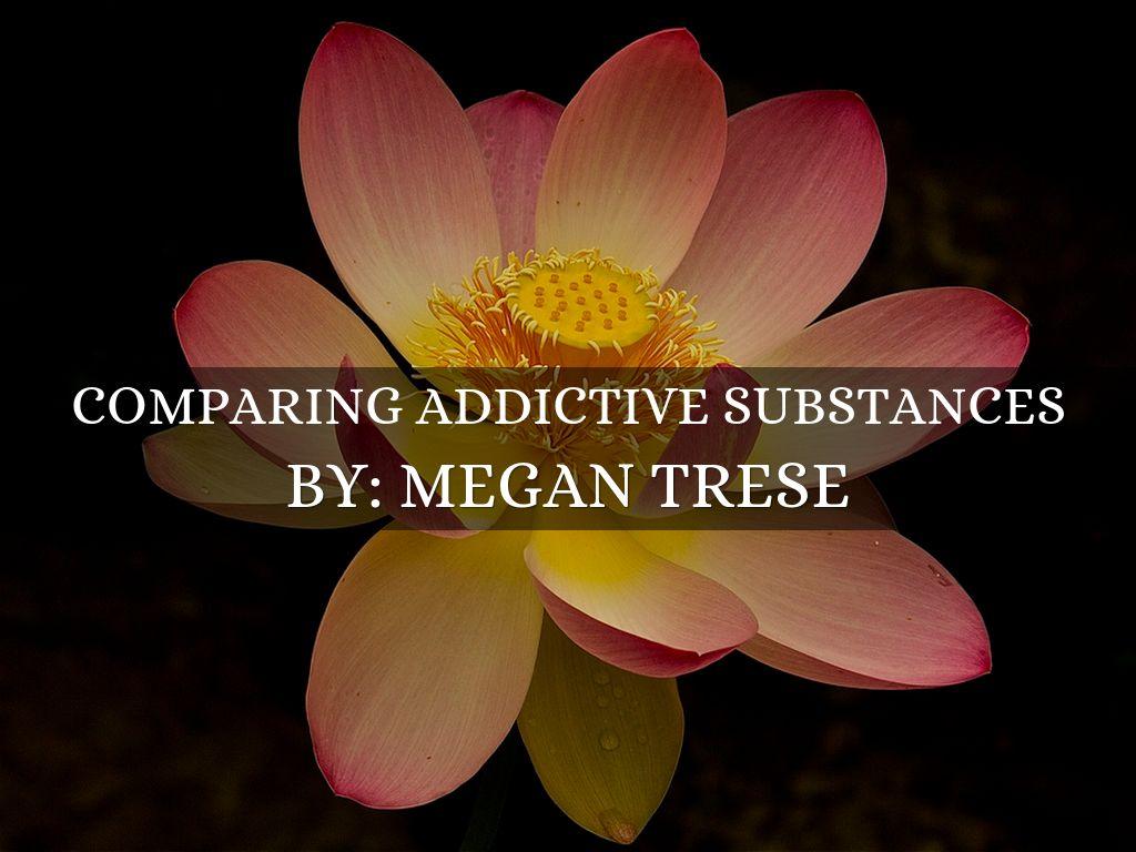 Lotus Flowers By Megan Trese