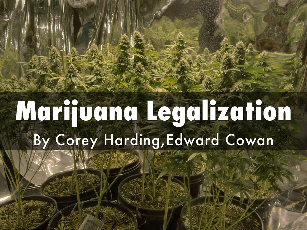 Election 2018: Cannabis Legalization Coverage and Results