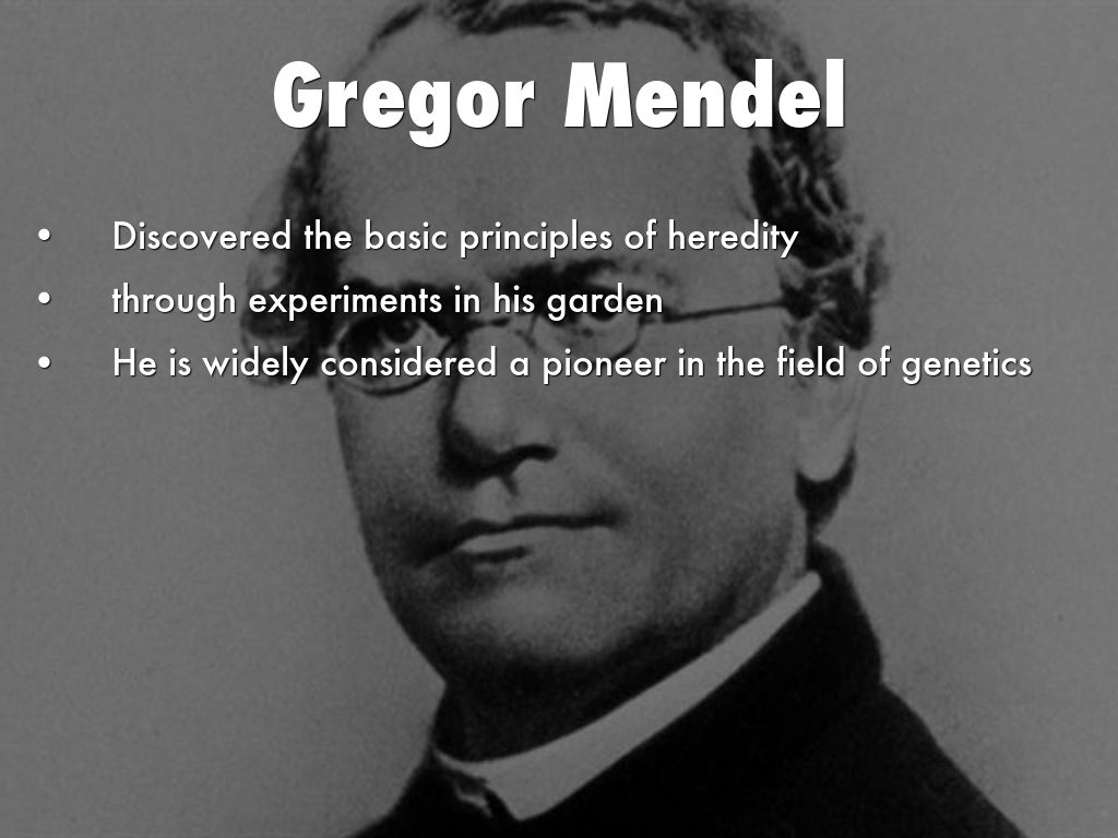 basic principles of heredity Mendelian inheritance is a type of biological inheritance that follows the laws originally proposed by gregor mendel in 1865 and 1866 and re-discovered in 1900 these laws were initially controversial.