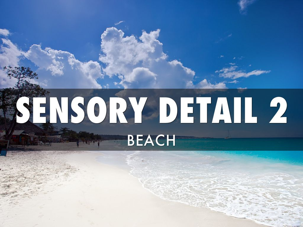 sensory details beach 1 free items on purchase of 2 items see details 22 lb of sensory sand and 10 tools are mess-free sands alive sand for a clean and safe sensory play.