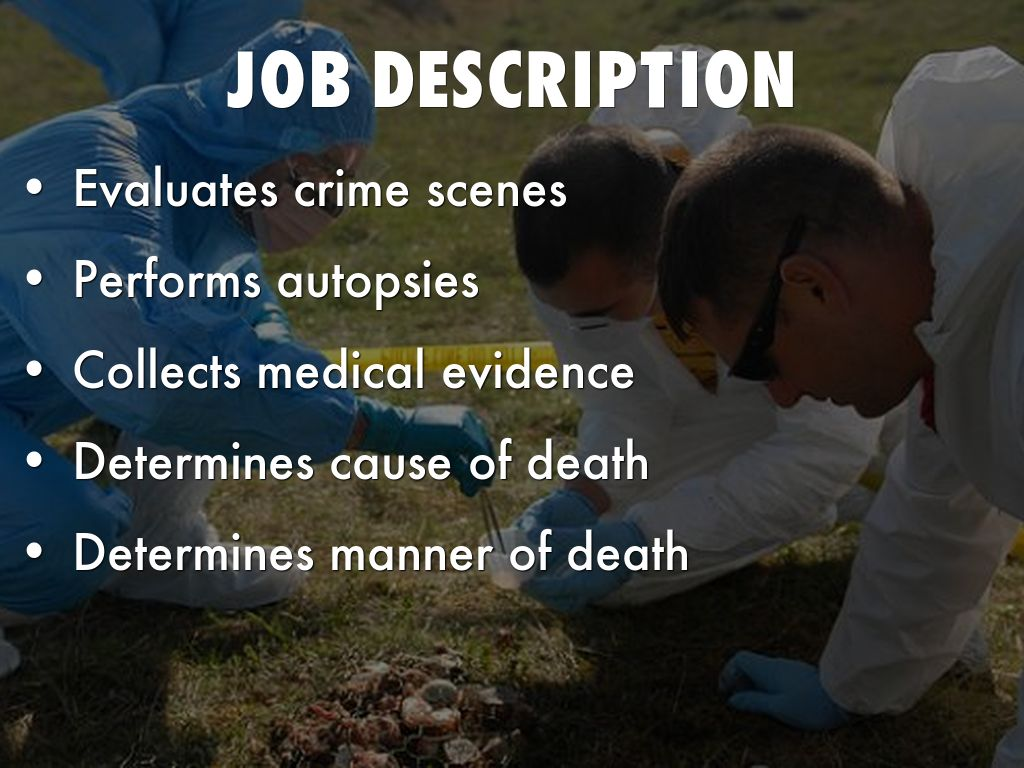 medical job description