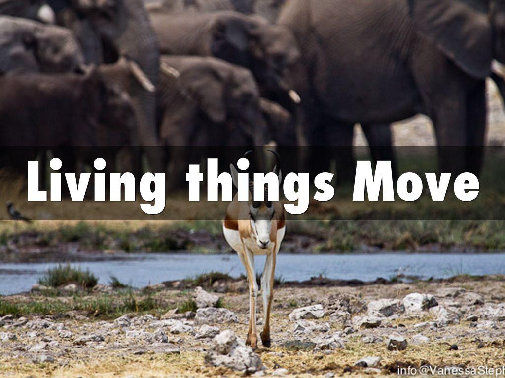 living things move by romnick villanueva