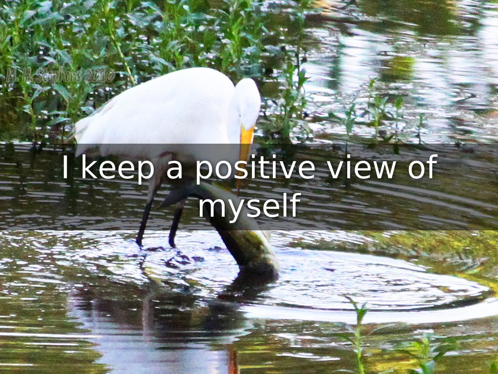 I keep a positive view of myself