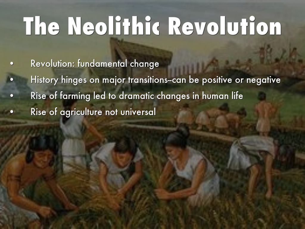 neolithic and industrial revolutions As a member, you'll also get unlimited access to over 75,000 lessons in math, english, science, history, and more plus, get practice tests, quizzes, and personalized coaching to help you succeed.